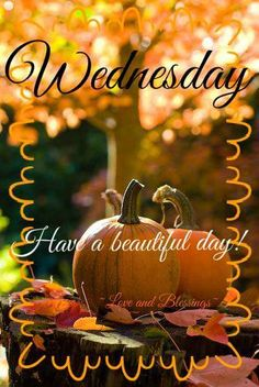 Have a beautiful Wednesday, My Sweet Sister's! I am sitting watching contractors put in floor!!! Looks so much nicer! It is an overcast fall day!!! Hope sun appears today!!! What's on you calendar for the day? Love you all! Muwah!