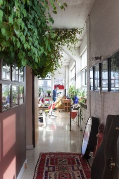 Tim's Toronto Loft Filled With Plants & Collectibles