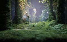 Скачать обои водоросли, растение, Рыба, дно, раздел разное в разрешении 1920x1080