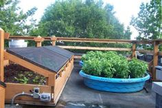 10 Square Foot Garden Ideas