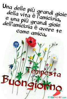 Immagini Belle Di Buongiorno - Pocopagare.com Video Hilarante, How To Wrap Flowers, Day For Night, New Years Eve Party, Good Morning, My Books, Blog, Hair Styles, Frases