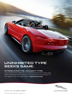 8 Jaguar Today Ideas New Jaguar Jaguar Lakeland