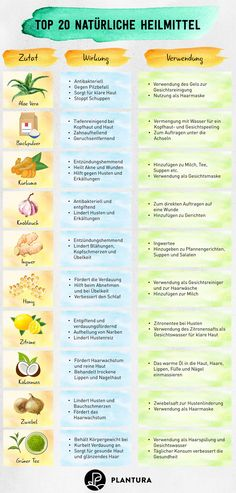 The 10 best medicinal plants from your own garden - Plantura Easy Plants To Grow, Meditation Garden, Chicken Feed, Diy Projects For Beginners, Tomato Garden, Vegetable Drinks, Healthy Eating Tips, Alternative Health, Medicinal Plants