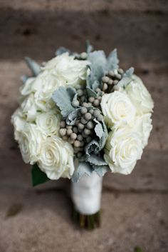 A twist on traditional this bridal bouquet is made of open white garden roses with a zig zag of silvery brazilla berries and dusty miller working its way through the center.