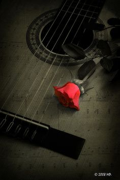 Music and flowers...2 of my loves!