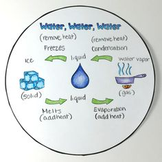 The Water Cycle Circle Book - The Owl Teacher Water Cycle Activities, Weather Activities, Science Activities, Science Ideas, Science Experiments, Middle School Science, Elementary Science, Science Classroom, Classroom Ideas