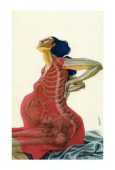 houseofheavy:  etspiritusvitae:  the female body is hardcore as fuck.   Yes is it. Pregnancy Anatomy, Pregnancy Art, Doula, Midwifery, Skeletal System, Female Skeleton, Human Anatomy, Anatomy Art, Pregnant Mother