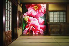 「蜷川実花×道後温泉 道後アート2015」 | Mika Ninagawa Official Site