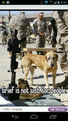 Whisper app, sad, dog - This is so sad www.adealwithGodbook.com