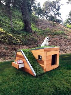 Cool DIY Dog House Plans Anyone Can Build DIY Projects There are many options available for you when looking for cool dog houses for your dog. There are many types of dog houses available, and some types a. Fancy Dog Houses, Canis, Dog House Plans, Pallet Dog House, House Dog, Small Dog House, Dog Furniture, Cheap Furniture, Luxury Furniture