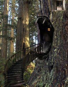 bluepueblo:  Tree House Stairway, The Enchanted Wood photo via enpundit