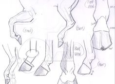 Draw Horses Horse Hooves and Legs sketch by iWaterbender - Animal Sketches, Drawing Sketches, Sketching, Drawing Art, Horse Drawings, Animal Drawings, Drawing Lessons, Drawing Techniques, Horse Drawing Tutorial