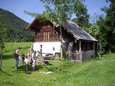 Aufblühen in der Fuschlseeregion | Fotograf: Erber | Credit:Fuschlsee Tourismus GmbH | Mehr Informationen und Bilddownload in voller Auflsung: http://www.ots.at/presseaussendung/OBS_20130416_OBS0004