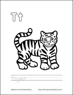 1000 Images About LETTER T On Pinterest