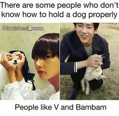 I love both of them but c'mon i love dogs more. (jus saying) My heart ached when i saw bambam holding the pup like that. Kdrama Memes, Funny Kpop Memes, Bts Memes, Got7 Funny, Got7 Meme, Bts Boys, Bts Bangtan Boy, K Pop, Got 7 Bambam