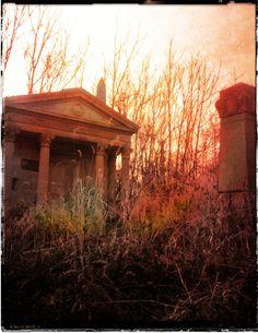 The abandoned Mount Moriah Cemeteryy, Philadelphia.  Photo by Spera 2012.