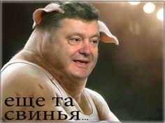 Порошенко назвали «свиньей», а его окружение — «ворьем» и «нарциссами» за скандальный фотошоп обложки западного журнала