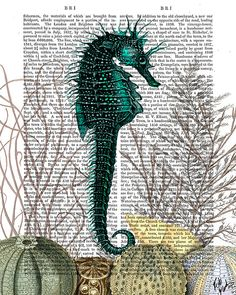 Sea Horse and sea urchins - nautical print beach house decor Illustration Drawing Poster Digital Print Wall Art Wall Décor Wall Hanging on Etsy, $15.00
