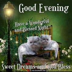 Good Evening Have A Wonderful Blessed Night goodnight good night goodnight quotes good evening good evening quotes goodnight quote goodnite goodnight quotes for friends goodnight quotes for family god bless goodnight quotes Good Night Love Pictures, Cute Good Night, Good Night Sweet Dreams, Good Night Image, Good Morning Good Night, Gd Morning, Night Time, Good Night Prayer, Good Night Blessings