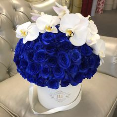 Signature 50 Blue Roses With Orchids stunning box of classic blue painted roses atop white phalaenopsis orchids carefully put together with effort and detail one by one to create a smooth dome shape. Order Mother's Day Flowers at JLF Los Angeles Phalaenopsis Orchid, Orchids, Cut Flowers, Fresh Flowers, Flora Botanica, Peony Colors, Mothers Day Flowers, Blue Roses, Something Blue