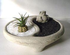 Yin Yang Bowl + Sweet Mini Pug Buddha and Air Plant Zen Garden