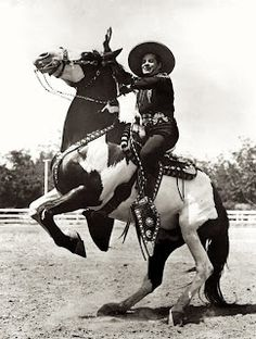 """""""DIABLO"""" Ridden by the """"CISCO KID"""" in the 50s series.  There were a Couple DIABLO'S that he rode, he did not own them."""