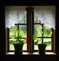 862 Best Lace Curtains Images Lace Curtains Embroidery