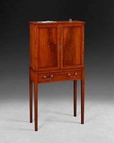 A rare George III period mahogany collector's cabinet on stand the interior fitted with 14 mahogany drawers of various sizes