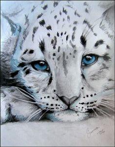 Image detail for -snow leopard cub by ~makebelief on deviantART art Baby Snow Leopard, Leopard Cub, Big Cats Art, Cat Art, Beautiful Cats, Animals Beautiful, Snow Leopard Drawing, Snow Leopard Tattoo, Tiger Art