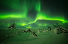 Aurora, Northern Lights, Nature, Travel, Heavens, Naturaleza, Viajes, Destinations, Nordic Lights