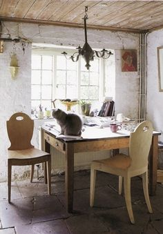 a cat transforms an ordinary desk into the extraordinary...