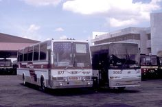 Photo taken on March 7, 1995.    Philippine Rabbit Isuzu (fleet No 1559) Hino CVC-646 (fleet No 977) and UD Nissan CVK-918 (fleet No 3063) and (fleet No 217) at the bus station in Tarlac Tarlac, Philippines.     Philippine Medical Tourism - Definitive Guide Covering Health Tourism, Dental Tourism, and medcal Tourism, Cosmetic Surgery, Alternative Medicine and Health Spas,in the Philippines and Tourism, Program attracting foreigners to get kidney transplants  www.mydentaltourism.com Dental Costs, Nissan Diesel, Dental Procedures, Perfect Smile, March 7, Bus Station, Alternative Medicine, Spas, Buses