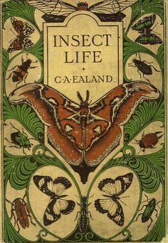 """illustration US : couverture de livre """"Insect Life"""" by C. Book Cover Art, Book Cover Design, Book Design, Book Art, Vintage Book Covers, Vintage Books, Vintage Stuff, Old Books, Antique Books"""