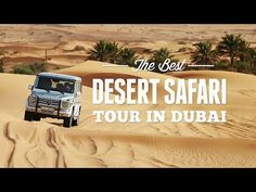 Dune Buggy Desert Safari tour for the thrill-seekers. Enjoy powerful 1000 cc Dune Buggy Ride on the Arabian desert. Best Dune Buggy Safari in Dubai. Dubai Things To Do, Desert Safari Dubai, Dubai Deals, Safari Holidays, Desert Tour, Fun Deserts, Safari Adventure, Visit Dubai, Dubai City