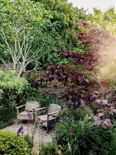 Hatta Byng introducing House & Garden's March 2021 issue | House & Garden Dutch Gardens, Back Gardens, Small Gardens, Outdoor Gardens, Courtyard Gardens, English Gardens, Deciduous Trees, Trees And Shrubs, Landscape Design