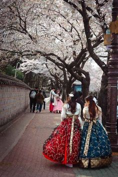 Cherry Blossoms and traditional Hanbok dresses in South Korea. Korea Itinerary - A 14 day itinerary that offers the perfect introduction to the land of morning calm. Must-Vist Places in South Korea Gyeongju, South Korea Seoul, South Korea Travel, Korean Traditional Clothes, Traditional Dresses, South Korea Photography, Korean Hanbok, Photos Voyages, Korean Outfits