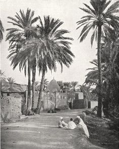 """Antique print 'Biskra: Marabout de Sidi-Lhassen' by Unsigned from """"La France Géographie Illustree""""; Published by Librairie Larousse, Paris Comoros Islands, Giza Egypt, Mauritius Island, Guinea Bissau, Egyptian Art, Sierra Leone, North Africa, Rock Art, Old Photos"""