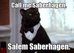 Today's Bisexual Character of the Day is: Salem Saberhagen (Sabrina the Teenage Witch) Salem Sabrina, Sabrina Cat, Crazy Cat Lady, Crazy Cats, Desenho Do Power Rangers, Salem Cat, Salem Saberhagen, Scooby Doo, Mario E Luigi