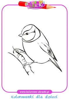 choclate lab coloring pages - photo#38