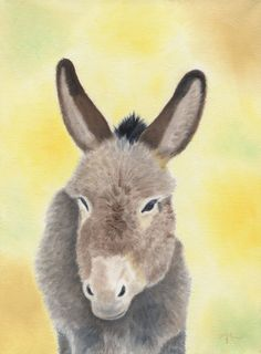 Burro 12x16 oil PAINTING by painterplace on Etsy