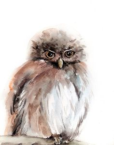Owl Watercolor Painting, Art Print from Watercolour Painting, Bird Owl Wall Art