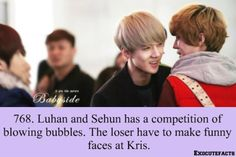 Luhan and Sehun playing games and using Kris as the punishment. Exo Facts, Funny Facts, Exo Ot12, Kaisoo, Make Funny Faces, Chanyeol Baekhyun, Xiuchen, Exo Memes, Korean Entertainment