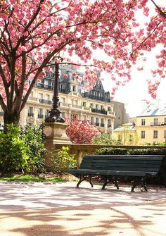 Cherry Blossom Park, Paris, France  photo via debbie