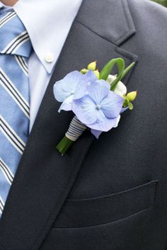 Boutonniere: Silk blue hydrangea blossoms, fresh green hypbericum berries, fresh lily grass wrapped in ribbon. Boutonnieres, Hydrangea Boutonniere, Corsage And Boutonniere, Groom Boutonniere, Prom Flowers, Blue Wedding Flowers, Flower Bouquet Wedding, Red Wedding, Periwinkle Wedding