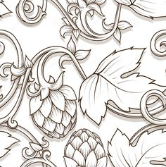 Hop ornament vector outline drawing