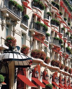 Hotel Plaza Athenee in Paris! Can't wait to go to Paris Hanoi, Hotels And Resorts, Best Hotels, Beautiful Hotels, Beautiful Places, Amazing Hotels, Elysee Palace, Places Around The World, Around The Worlds