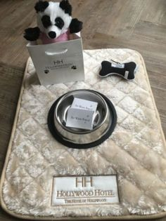 """We've always been pet-friendly at Hollywood Hotel, but now your furry friends can enjoy special amenities as part of the """"Pamper Your Pet"""" package."""