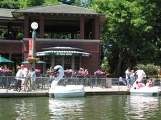 Swan paddle boats by Cafe Brauer, Lincoln Park Zoo, by Wildcat Dunny (Chicago Pin of the Day, 5/8/2015).