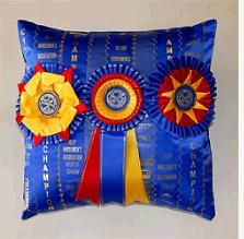 Something to do with all my old horse show ribbons!  This site has horse show ribbons quilts, pillows, picture frames...all sorts of fun stuff!