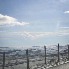 D900 Aubrac - http://www.sebastiencaverne.fr/d900-aubrac/ #Aubrac, #Couleur, #Errance, #France, #RoadTrip